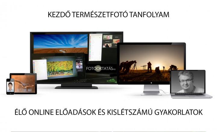 videokereskedés órák kezdőknek)